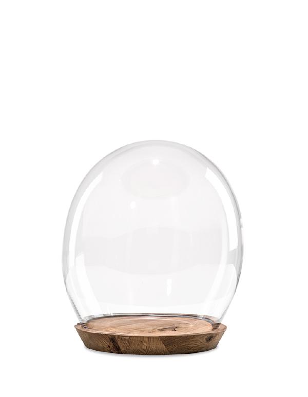 Tim dome medium