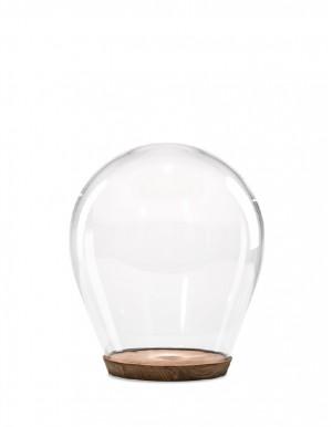 Tim dome small